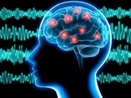 La «souffrance» des personnes électrohypersensibles est bien réelle : on a décortiqué l'étude de l'Anses sur le sujet