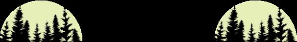 BioElect - Lyon